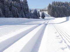 Winter028.jpg