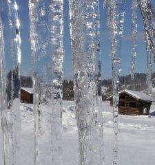 Winter034.jpg