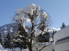 Winter036.jpg